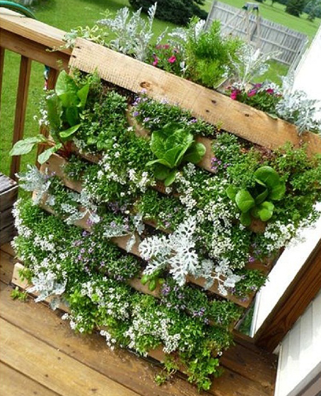 10 DIY Garden Ideas for Using Old Pallets - Greenhouses Australia ...